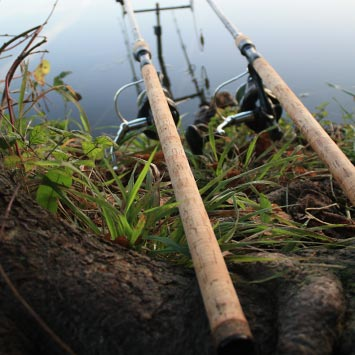 Shop All Fishing Rods