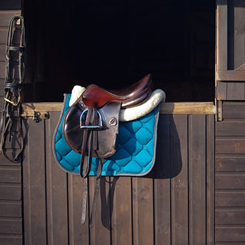 Shop Horse Riding At The Stable