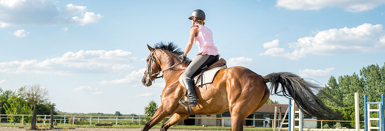 Shop Horse Riding Safety Wear